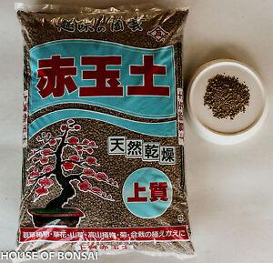 Akadama 100%  Japanese Bonsai Soil, tool - Small 18 lbs ( 2-3 mm )