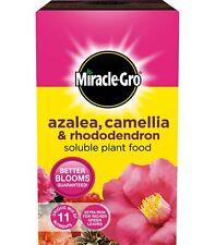 Miracle Gro Azalea, Camellia & Rhododendron Soluble Plant Food 1KG Fertiliser