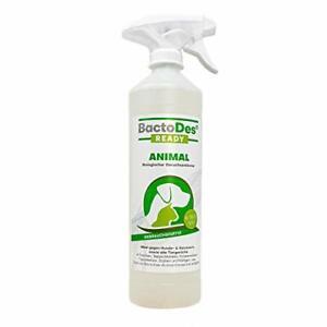 Animal Ready Geruchsentferner Fleckenentferner Spray Gebrauchsfertig 1L