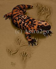 GILA MONSTER TRAX--Reptile Lizard Desert Science Kids T shirt L (14-16) only NEW