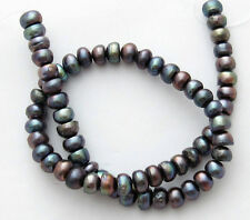 "Freshwater Pearl Peacock 8mm Flat Round Fat Button Loose Beads 15"" Strand W42"
