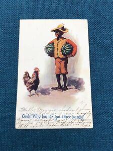 Antique Black Americana Boy Watermelon Chicken Postcard