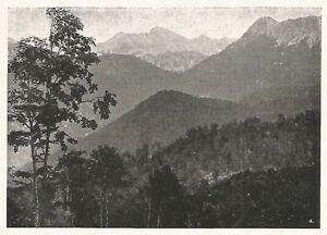D0302 Parco Nazionale d'Abruzzo - Val Fondello - Stampa del 1928 - Old Print