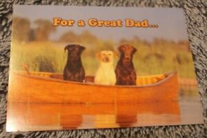 Father's Day - Leanin' Tree Greeting Cards