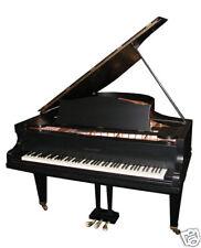 Beautiful Antique Black Bechstein Grand Piano #4597
