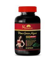 Detox supplements weight loss - BLUE GREEN ALGAE 500MG 1B- Spirulina energy