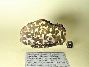 meteorite pallasite SERICHO, (Habaswein) from Kenya, COMPLETE slice 101,5 g