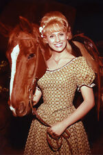 Melody Patterson As Jane Angelica Thrift In F Troop 11x17 Mini Poster In Dress