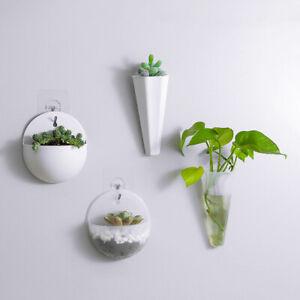 Hydroponic Wall Hanging Vase Plastic Flowerpot Dill Plant Pots Home Art Decor
