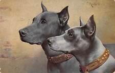 Mr W.Adams, 32, Seymour Street, Northampton, dogs, Upper Beeding, 1928  qb943
