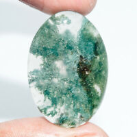 Cts. 28.60 Natural Moss Agate Cab Oval Cabochon Exclusive Loose Gemstone
