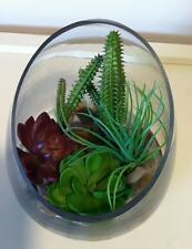 MINIATURE GLASS CACTUS TERRARIUM GARDEN ARTIFICIAL DECOR DECORATION * NEW*