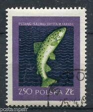 POLOGNE, 1958, timbre 931, POISSONS, TRUITE SAUMONEE, oblitéré