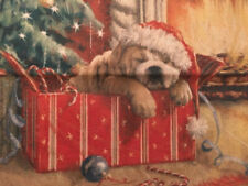 Christmas Dog Present Toss Throw Pillow Cover Holiday Home Decor