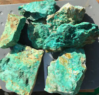 Rough Natural Chrysocolla Specimens 2 Pounds Extra High Quality Lot Bulk Healing