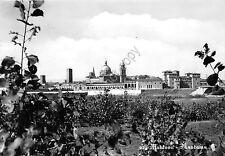 Cartolina - Postcard - Mantova - Panorama - 1958