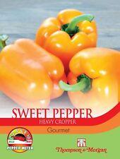 Thompson & Morgan-Hortalizas-Pepper Dulce Gourmet - 10 Semillas