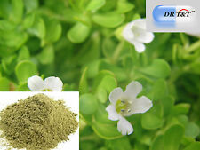 100g Poudre Brahmi Bacopa Monniera 100% Bio Premium