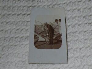 Royal Navy Photo Postcard – Officer & Hare Mascot – HMS Powerful Australia