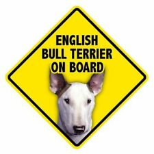 English Bull Terrier on Board - 5x5 Car Window Dog Sign