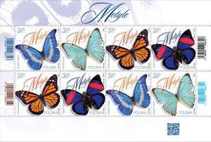 Schmetterlinge - 2020.