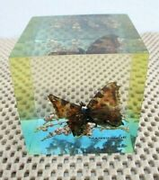 Lucite Block Butterfy and Botanical  Animaux Naturels  Martinique Paperweight GL
