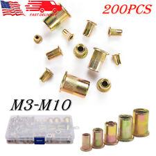 200pcs Zinc Plated Rivet Nut Tool Kit Mixed Steel Insert Nutsert Rivnut M3 M10