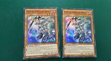 N°2363 - yu gi oh - evening twilight knight - docs-en023 - anglais lots 2 cartes