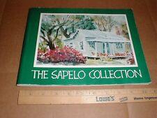the Sapelo Island GA Georgia culture art artwork collection s/c book 1997
