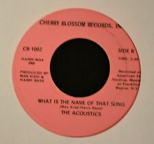 The Acoustics Cherry Blossom 1001 Living in Hard Times