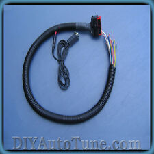 Microsquirt replacement harness NEW