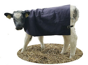 AniMac Canvas Calf Jacket/ Blanket/ Coat | Warm Lining | Showerproof