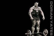 Incorniciato stampa-Dorian Yates Bodybuilder (Picture Sangue & budella Bodybuilding ART)