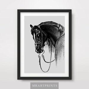 HORSE ART PRINT POSTER Animals Black White Portrait Decor Illustration