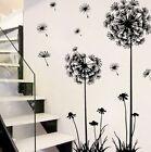 Black Removable Art Vinyl DIY Dandelion Decal Mural Wall Sticker Home Room Decor