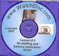 Watch Balance Wheel Repairs - Restaffing with videos 2nd REVISED Edition