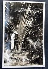 FLORIDA * EXTRACTING WATER RPPC SIMPSON PHOTO 971