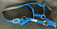 """Adjustable Chin And Throat Snap Horse Halter Leather 1"""" Average Horse 800-1100lb"""