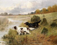 Art Giclee Print Two Hunting Dogs landscape Oil painting Printed on Canvas P433