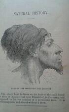 A Natural History of Man & Animal Rev J. G. Wood Illustrated 1886 Native Indians