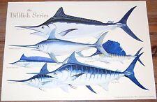 Fishing Artwork - Trevor Hawkins Print - The Billfish Series, Limited Edition