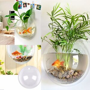 WALL HANG FISH TANK Vase creative Acrylic Bowl Aquarium Aquatic home Decoration