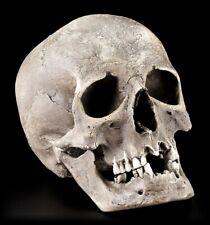 Corbeau à Mâchoire Inférieure Cendrier Gothique Crow Tête de Mort Déco