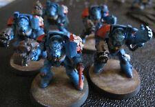 40K Space Marines Terminator Squad painted
