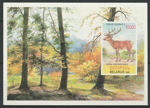 Belarus 1995 Fauna Animals Deer MNH Block
