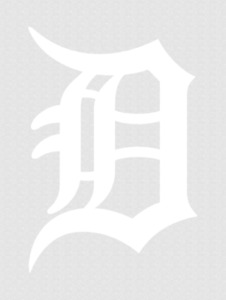 Detroit Tigers Logo Decal Sticker
