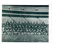 1967 ATLANTA FALCONS TEAM 8x10 PHOTO  FOOTBALL NFL AFL GEORGIA