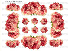 FRENCH FURNITURE DECAL DIY SHABBY CHIC IMAGE TRANSFER VINTAGE CORAL ROSE FLOWER