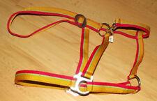 Halfter Shetty & Pony bis 1,20M Stallhalfter Nylonhalfter gelb grün rot