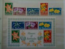 BARBADOS 1970 FLOWERS 5v & 5v IMPERF M/S MH MINT SG419/MS424